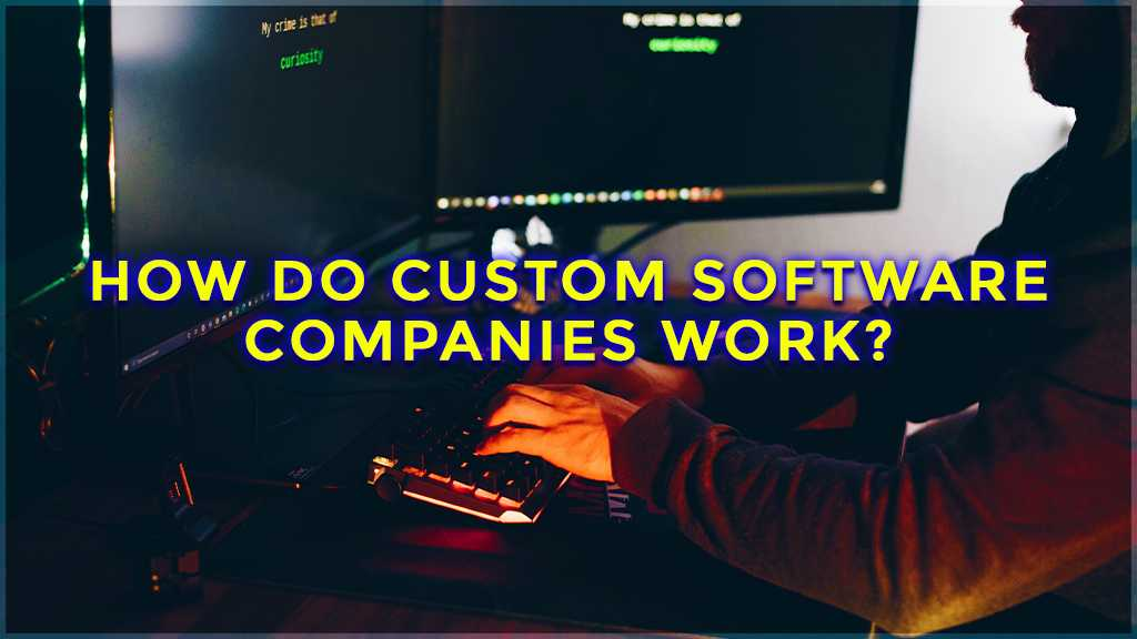 how do custom software companies work